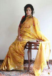 taapsee-pannu-latest-photoshoot-stills-in-saree-4